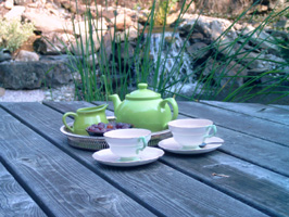 Tea by the pond.